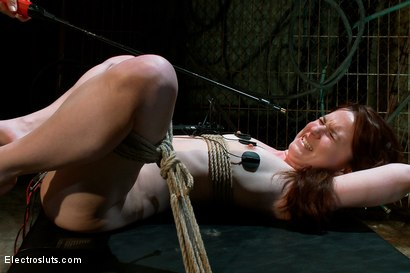 Photo number 11 from Heavy Electro BDSM Assplay shot for Electro Sluts on Kink.com. Featuring AnnaBelle Lee and Bobbi Starr in hardcore BDSM & Fetish porn.