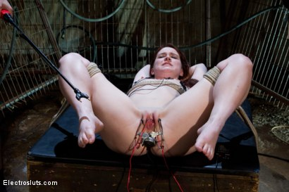 Photo number 4 from Heavy Electro BDSM Assplay shot for Electro Sluts on Kink.com. Featuring AnnaBelle Lee and Bobbi Starr in hardcore BDSM & Fetish porn.