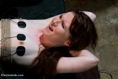 Photo number 7 from Heavy Electro BDSM Assplay shot for Electro Sluts on Kink.com. Featuring AnnaBelle Lee and Bobbi Starr in hardcore BDSM & Fetish porn.