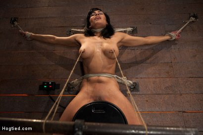Photo number 12 from Nipples pull 1 way, neck rope pulls the other. 2 options: breathe or suffer. All while cumming. shot for Hogtied on Kink.com. Featuring Beretta James in hardcore BDSM & Fetish porn.