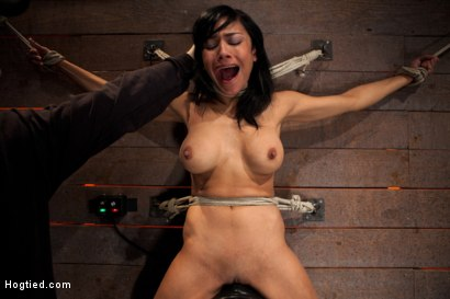 Photo number 14 from Nipples pull 1 way, neck rope pulls the other. 2 options: breathe or suffer. All while cumming. shot for Hogtied on Kink.com. Featuring Beretta James in hardcore BDSM & Fetish porn.