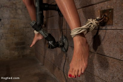 Photo number 3 from Nipples pull 1 way, neck rope pulls the other. 2 options: breathe or suffer. All while cumming. shot for Hogtied on Kink.com. Featuring Beretta James in hardcore BDSM & Fetish porn.