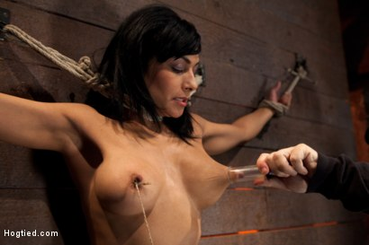 Photo number 6 from Nipples pull 1 way, neck rope pulls the other. 2 options: breathe or suffer. All while cumming. shot for Hogtied on Kink.com. Featuring Beretta James in hardcore BDSM & Fetish porn.