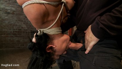 Photo number 12 from 35yr old, super hot cougar, is bound in a reverse prayer, nipple tormented, face fucked, made to cum! shot for Hogtied on Kink.com. Featuring Beretta James in hardcore BDSM & Fetish porn.