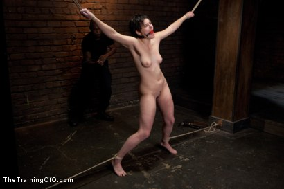 Photo number 13 from Feature Shoot<br>Abandoned Slaves  shot for The Training Of O on Kink.com. Featuring Keira Quinn, Angelica Swiss, Alice Kingsnorth, Jack Hammer and Bonnie Day in hardcore BDSM & Fetish porn.