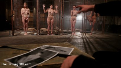 Photo number 4 from Feature Shoot<br>Abandoned Slaves  shot for The Training Of O on Kink.com. Featuring Keira Quinn, Angelica Swiss, Alice Kingsnorth, Jack Hammer and Bonnie Day in hardcore BDSM & Fetish porn.