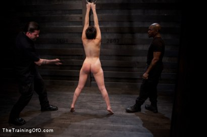 Photo number 14 from Feature Shoot<br>Abandoned Slaves  shot for The Training Of O on Kink.com. Featuring Keira Quinn, Angelica Swiss, Alice Kingsnorth, Jack Hammer and Bonnie Day in hardcore BDSM & Fetish porn.