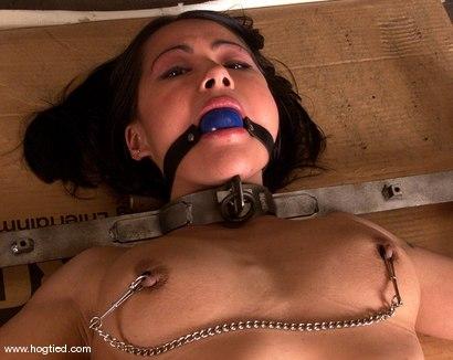 Photo number 5 from Octavia shot for Hogtied on Kink.com. Featuring Octavia in hardcore BDSM & Fetish porn.