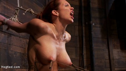 Photo number 10 from Extreme nipple torment, brutal gag, a skull fucking, while the sybian makes her cum her brains out!  shot for Hogtied on Kink.com. Featuring Rain DeGrey in hardcore BDSM & Fetish porn.