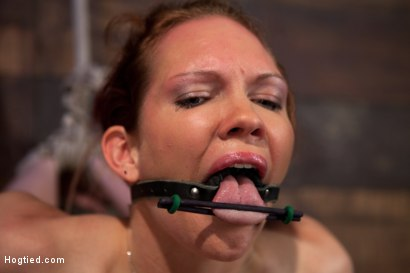 Photo number 13 from Extreme nipple torment, brutal gag, a skull fucking, while the sybian makes her cum her brains out!  shot for Hogtied on Kink.com. Featuring Rain DeGrey in hardcore BDSM & Fetish porn.
