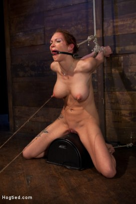 Photo number 14 from Extreme nipple torment, brutal gag, a skull fucking, while the sybian makes her cum her brains out!  shot for Hogtied on Kink.com. Featuring Rain DeGrey in hardcore BDSM & Fetish porn.