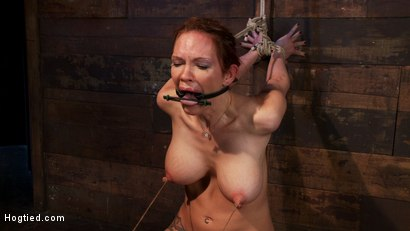Photo number 7 from Extreme nipple torment, brutal gag, a skull fucking, while the sybian makes her cum her brains out!  shot for Hogtied on Kink.com. Featuring Rain DeGrey in hardcore BDSM & Fetish porn.