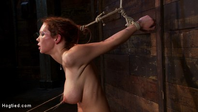 Photo number 9 from Extreme nipple torment, brutal gag, a skull fucking, while the sybian makes her cum her brains out!  shot for Hogtied on Kink.com. Featuring Rain DeGrey in hardcore BDSM & Fetish porn.