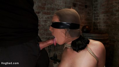 Photo number 9 from Ashli has her huge puffy nipples tormented, is made to cum & skull fucked Takes a great body flogging shot for Hogtied on Kink.com. Featuring Ashli  Orion in hardcore BDSM & Fetish porn.