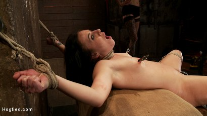 Photo number 7 from Brutal cunt flogging, nipple torment & finger fucking till she squirts w/multiple screaming orgasms! shot for Hogtied on Kink.com. Featuring Ashli  Orion in hardcore BDSM & Fetish porn.