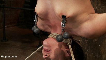 Photo number 8 from Rain DeGrey Makes Ashli Orion Cum in an Inverted Suspension shot for Hogtied on Kink.com. Featuring Ashli  Orion in hardcore BDSM & Fetish porn.