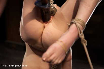 Photo number 5 from Slave Training Lily LaBeau<br>Final Day Live shot for The Training Of O on Kink.com. Featuring Lily LaBeau and The Pope in hardcore BDSM & Fetish porn.