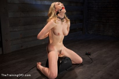 Photo number 9 from Slave Training Lily LaBeau<br>Final Day Live shot for The Training Of O on Kink.com. Featuring Lily LaBeau and The Pope in hardcore BDSM & Fetish porn.
