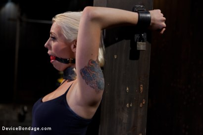 Photo number 3 from Lorelei Lee returns to Device Bondage to test her limits of pain and pleasure! shot for Device Bondage on Kink.com. Featuring Lorelei Lee in hardcore BDSM & Fetish porn.