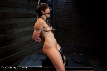 Photo number 9 from Abandoned Slaves<br>Day 2 shot for The Training Of O on Kink.com. Featuring Alice Kingsnorth in hardcore BDSM & Fetish porn.