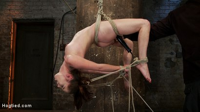 Photo number 6 from Girl next door Jessi Palmer in a back breaking suspension, skull fucked, made 2 cum over & over shot for Hogtied on Kink.com. Featuring Jessi Palmer in hardcore BDSM & Fetish porn.