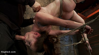 Photo number 7 from Girl next door Jessi Palmer in a back breaking suspension, skull fucked, made 2 cum over & over shot for Hogtied on Kink.com. Featuring Jessi Palmer in hardcore BDSM & Fetish porn.