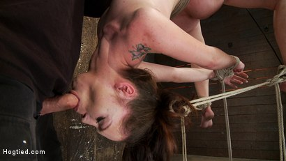 Photo number 9 from Girl next door Jessi Palmer in a back breaking suspension, skull fucked, made 2 cum over & over shot for Hogtied on Kink.com. Featuring Jessi Palmer in hardcore BDSM & Fetish porn.