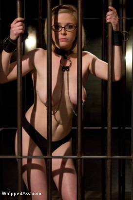 Photo number 2 from Penny Pax has been Felony'ed shot for Whipped Ass on Kink.com. Featuring Felony and Penny Pax in hardcore BDSM & Fetish porn.
