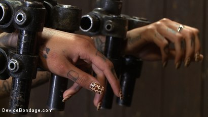 Photo number 1 from Bonnie Rotten - Tamed Whore By JP shot for Device Bondage on Kink.com. Featuring Bonnie Rotten in hardcore BDSM & Fetish porn.