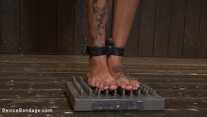 Photo number 11 from Bonnie Rotten - Tamed Whore By JP shot for Device Bondage on Kink.com. Featuring Bonnie Rotten in hardcore BDSM & Fetish porn.