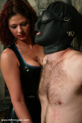 Photo number 3 from Venus May and Jack shot for Men In Pain on Kink.com. Featuring Venus May and Jack in hardcore BDSM & Fetish porn.