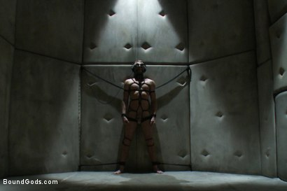 Photo number 8 from Hot New Sub Drake Temple shot for Bound Gods on Kink.com. Featuring Drake Temple and Josh West in hardcore BDSM & Fetish porn.