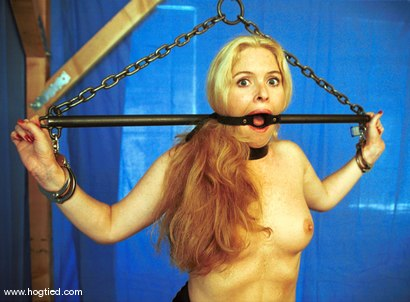 Photo number 2 from Paige shot for Hogtied on Kink.com. Featuring Paige in hardcore BDSM & Fetish porn.