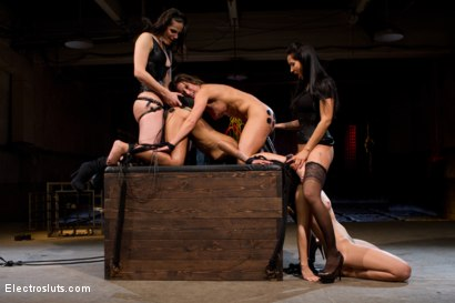 Photo number 9 from Who's the Toughest shot for Electro Sluts on Kink.com. Featuring Skin Diamond, Ariel X, Isis Love, Bobbi Starr and Chastity Lynn in hardcore BDSM & Fetish porn.