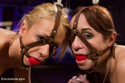 Photo number 2 from Double the Pleasure, Double the Electrosex shot for Electro Sluts on Kink.com. Featuring Amber Rayne, Kaylee Hilton and Bobbi Starr in hardcore BDSM & Fetish porn.