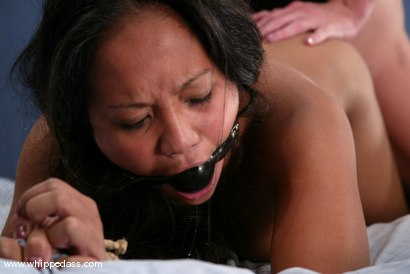 Photo number 12 from Phoenix and Loni shot for Whipped Ass on Kink.com. Featuring Loni and Phoenix in hardcore BDSM & Fetish porn.
