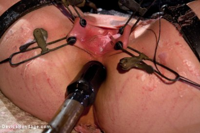 Photo number 8 from Sexy Sarah gets Fucked Hard in Brutal Bondage with Nerve Racking Breath Play shot for Device Bondage on Kink.com. Featuring Sarah Shevon in hardcore BDSM & Fetish porn.
