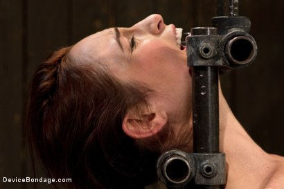 Photo number 2 from Part 1 of 4 of the Live February Shoot<br>Breaking Amber Rayne shot for Device Bondage on Kink.com. Featuring Amber Rayne in hardcore BDSM & Fetish porn.