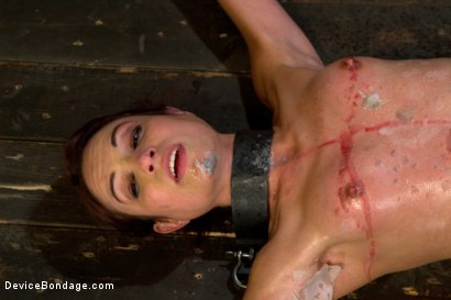 Photo number 8 from Amber At Last shot for Device Bondage on Kink.com. Featuring Amber Rayne in hardcore BDSM & Fetish porn.