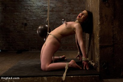 Photo number 14 from Predicament bondage as Juliette body is abused with pain & pleasure!  Multi-orgasms, pussy torment! shot for Hogtied on Kink.com. Featuring Juliette March and Isis Love in hardcore BDSM & Fetish porn.