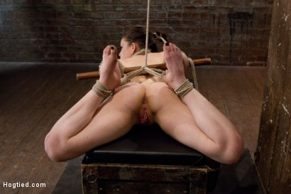 Photo number 5 from Sweet Juliette Hogtied and Violated by Isis Love shot for Hogtied on Kink.com. Featuring Juliette March and Isis Love in hardcore BDSM & Fetish porn.