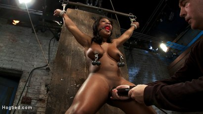 Photo number 12 from 18yr experience very first hardcore bondage scene. Huge natural tits & perfect ass. Made to squirt! shot for Hogtied on Kink.com. Featuring Yasmine Loven in hardcore BDSM & Fetish porn.