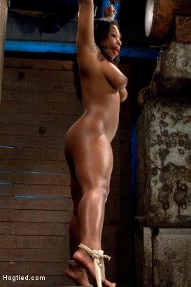 Yasmine Loven