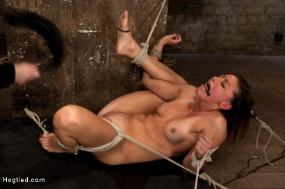 Photo number 12 from 18yr former All State athlete in Volleyball, Track & B/ball. 1st time cumming in hardcore bondage! shot for Hogtied on Kink.com. Featuring Rilynn Rae in hardcore BDSM & Fetish porn.