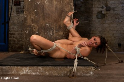 Photo number 14 from 18yr former All State athlete in Volleyball, Track & B/ball. 1st time cumming in hardcore bondage! shot for Hogtied on Kink.com. Featuring Rilynn Rae in hardcore BDSM & Fetish porn.
