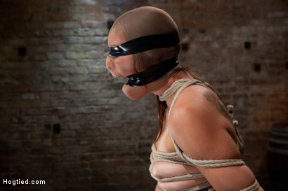 Photo number 13 from Rilynn Dominated and Cock Trained shot for Hogtied on Kink.com. Featuring Rilynn Rae in hardcore BDSM & Fetish porn.