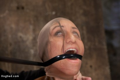 Photo number 14 from Rilynn Dominated and Cock Trained shot for Hogtied on Kink.com. Featuring Rilynn Rae in hardcore BDSM & Fetish porn.
