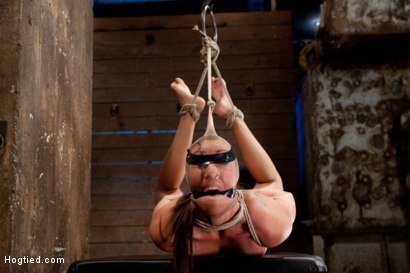Photo number 3 from Rilynn Dominated and Cock Trained shot for Hogtied on Kink.com. Featuring Rilynn Rae in hardcore BDSM & Fetish porn.