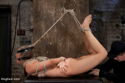 Photo number 4 from Rilynn Dominated and Cock Trained shot for Hogtied on Kink.com. Featuring Rilynn Rae in hardcore BDSM & Fetish porn.