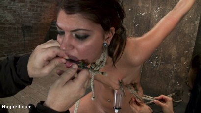 Photo number 11 from Cassandra Nix Live Show Part 3 shot for Hogtied on Kink.com. Featuring Cassandra Nix and Isis Love in hardcore BDSM & Fetish porn.